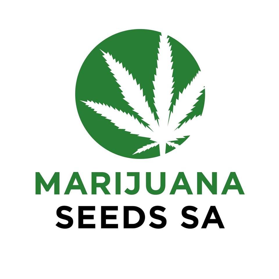 Marijuana_Seeds_SA_Logo