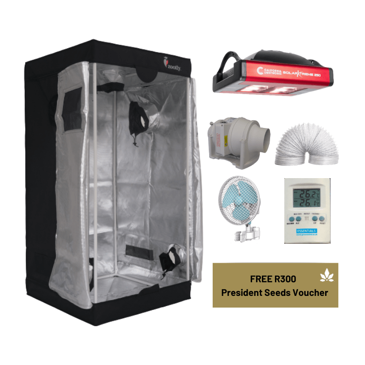 Small Grow Tent Setup with SolarXtreme 250